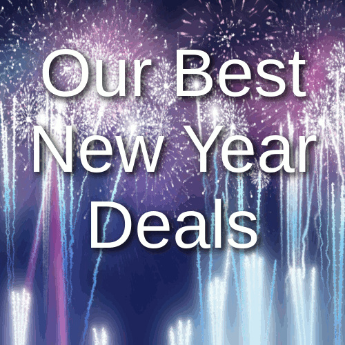 Airless Sprayers and Accessories New Year Sale